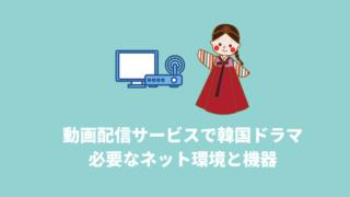 韓国ドラマをVODで見る場合の必要なネット環境と機器